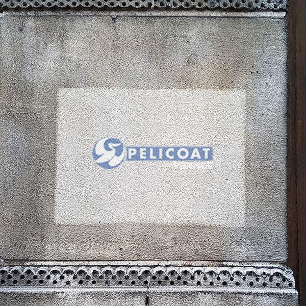 Essai du produit nettoyant professionnel Pierre'Net Pelicoat
