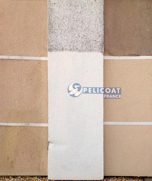 PRO RENOV Pelicoat France   Produits de nettoyage, rénovation et protection du patrimoine